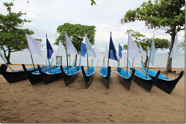 DA-BFAR idinaos ang 53rd Fish Conservation Week