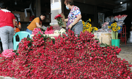 FIGHTING POLIO & FLOWERS FOR VALENTINES DAY