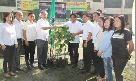DA turns over indigenous, fruit-bearing trees to Marikina to help deter flooding