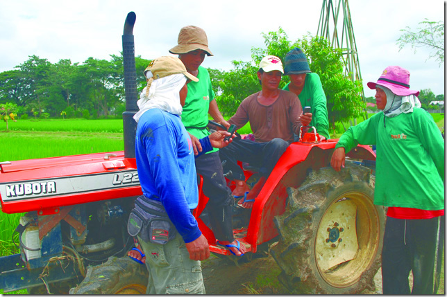 Texting OK in ag ex – PhilRice researcher